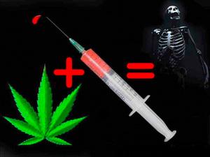 Экспертиза на наркотики