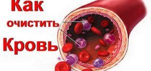 Способы очистки крови