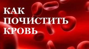 Как в домашних условиях почистить кровь
