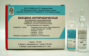 Зачем нужны прививки от бешенства